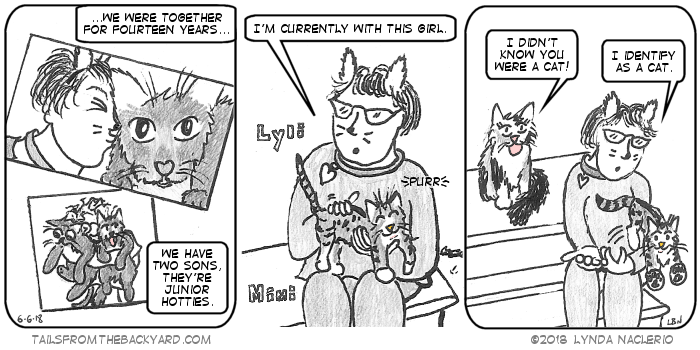 I talk about how I was with m'man for fourteen years and we have two sons that are junior hotties. In the second panel I am holding a young tabby. I say I am currently with this girl. The fluffy calico says she didn't know I was a cat. As the tabby jumps off my lap, I admit I identify as a cat. I am still wearing the cat ears, collar, and drawn-on whiskers.