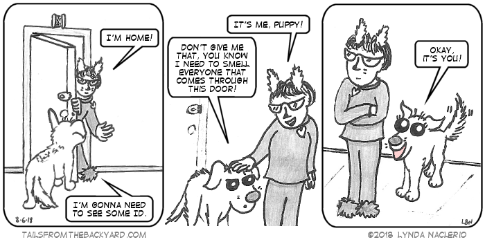 """I come home and the Puppy is waiting at the door, hair standing on end. She tells me she needs to see some ID. I tell her it's me, but she insists she needs to smell everyone who comes through the door. In the third panel, The Puppy is done sniffing my butt and says, """"Okay, it's you!"""""""