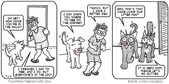 The Puppy finds me in the hallway outside of the bathroom. I say I dreamed I had to wee and I do but everyone's in the loo. The Puppy offers to show me where to wee on the corner. I say I have a better idea. In the third panel, the cats discuss why I'm using their pan. The Fluffy One says they should let me have their pan and go outties.