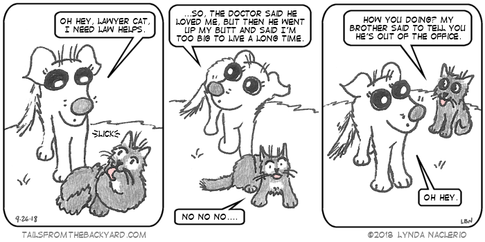 "The Puppy interrupts the Fluffy One licking himself to ask him for law help. She explains that her vet said he loved her but then he went up her butt and said she's too big to live a long time. The Fluffy One is freaked out and says, ""No no no."" In the third panel, The Slinky One appears behind The Puppy and says, ""How you doin'? My brother said to tell you he's out of the office."""