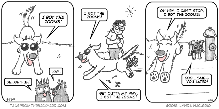 "The Puppy declares she has the zooms, and makes the universal dog pose of let's play. The Fluffy One says it's delightful and The Slinky One just says, ""kay."" The Puppy runs past me as I rake leaves and announces she has the zooms and everyone has to get out of her way. In the third panel, she runs past her pug friend Joey and says she can't talk now because she has the zooms. Joey the pug, standing near a fire hydrant, says, ""Cool. Smell you later."""