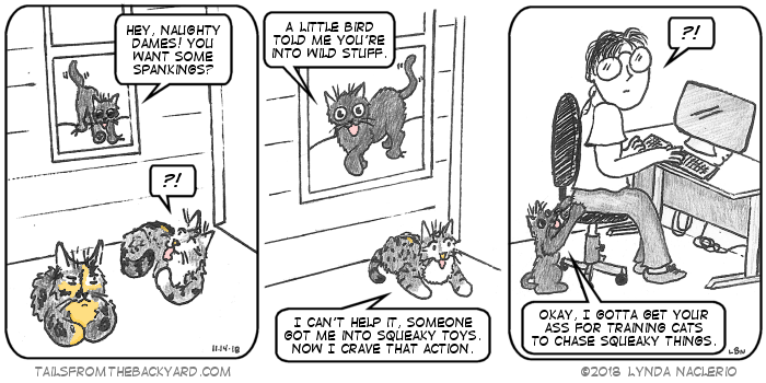 "The Slinky One yells out the window to the young tabby and the tortie, ""Hey naughty dames! You want spankings?"" The young tabby says she can't help thinking about squirrels when some lady got her into squeaky toys."" In the third panel, the Slinky One is clawing me in the backside for training cats to chase squeaky things."