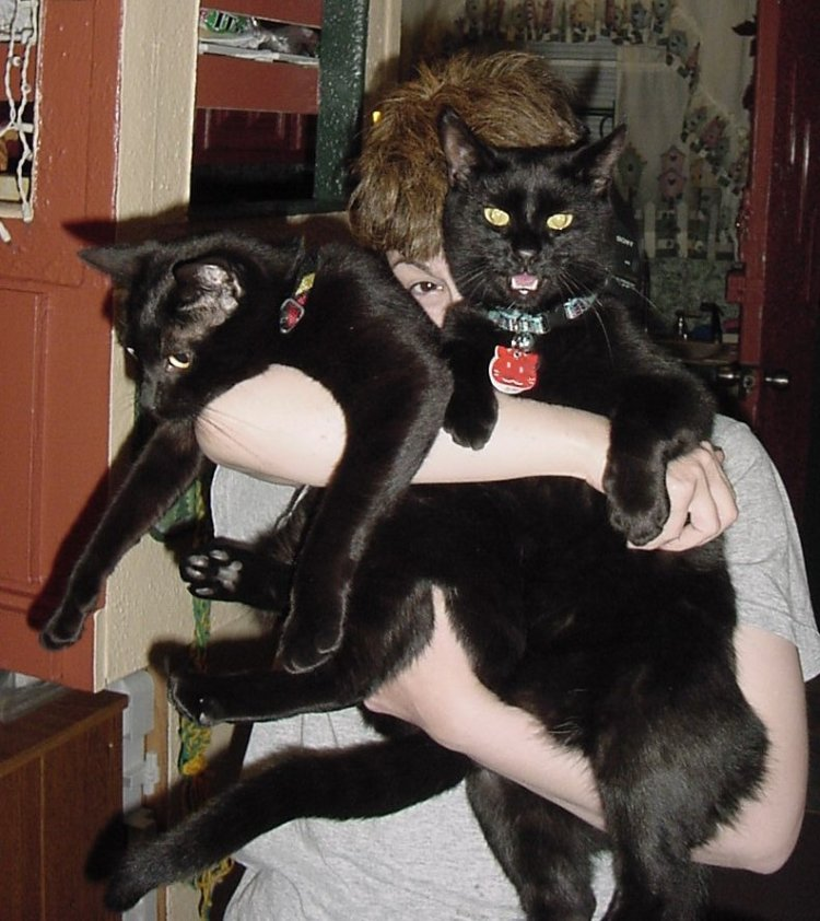 A silly woman holds two black kittens up to her face. One is in mid-meow.