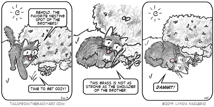"""The Fluffy One approaches a rock in front of a hedge. """"Behold, the favorite nesting spot of the brothers!"""" He says. """"Time to get cozy!"""" He curls up next to a blade of grass and points out, """"This grass is not as strong as the shoulder of the brother."""" In the third panel, his head is on the ground. """"Dammit!"""" he says."""