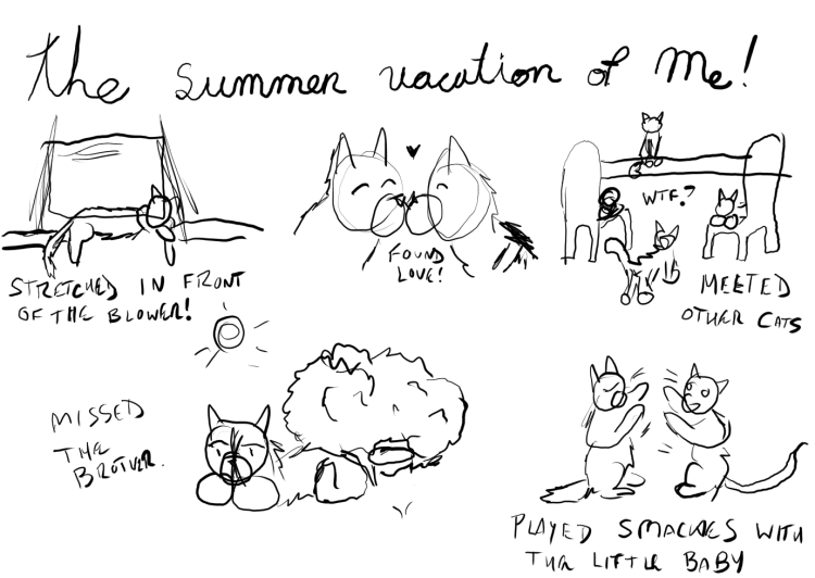 "A crudely drawn sketch of what The Fluffy One did on his summer vacation, with him stretched out in front of an air conditioner, getting nose kisses and finding love from Babycat, seeing the Three Mousketeers in the backyard and asking, ""What the fish?"" then loafing in the sun and missing his brother. The last sketch is of him having a smacky fight with The Kitten."
