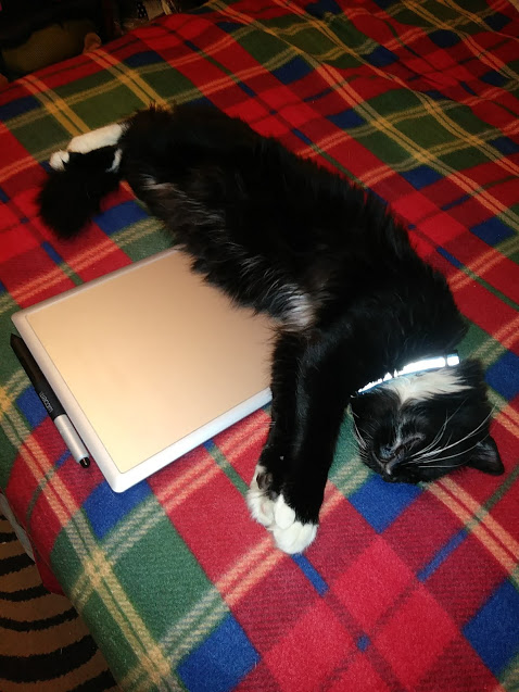 A Fluffy tuxedo cat stretches out on a digital drawing tablet.